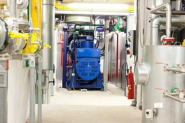 Cogeneration Power Plant Solutions