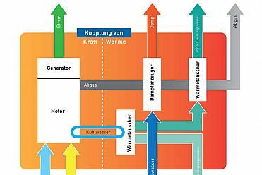 Cogeneration & Trigeneration
